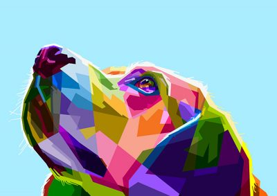 Poly PopArt - Colourful Dog Head