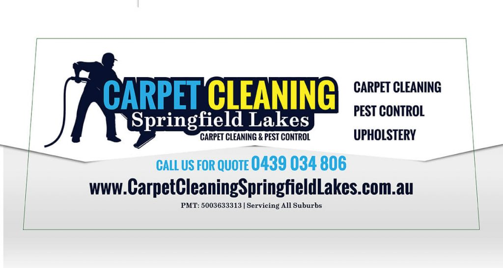 Carpet Cleaning One way Vision